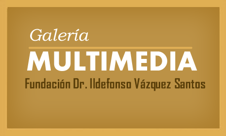 galeria multimedia videos instagram fotos